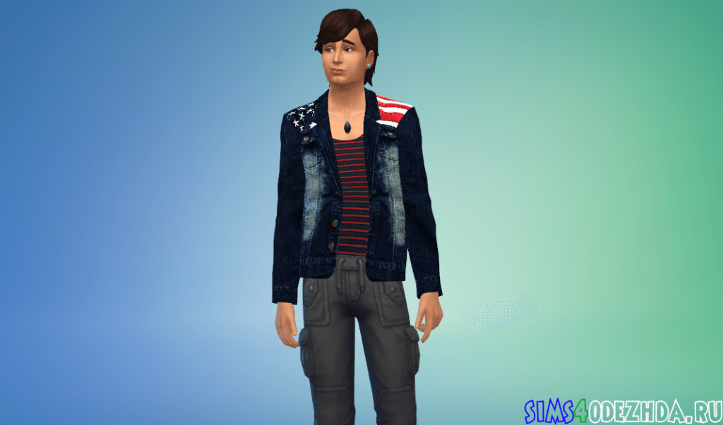 Мужской пиджак с американским флагом - фото 1