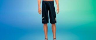 Спортивные тренировочные шорты для мужчин для Симс 4 - фото 1