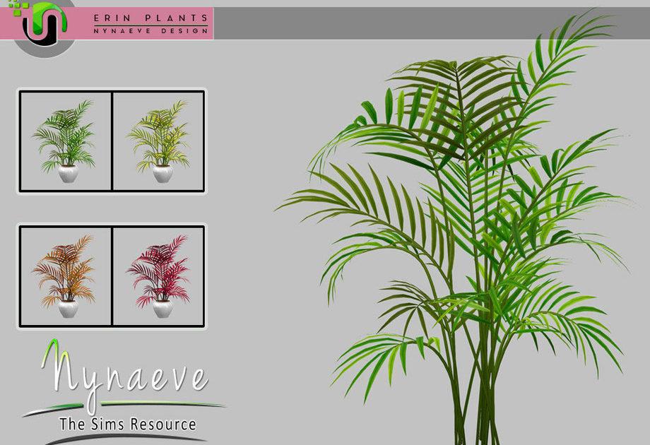 Комнатное растение Areca Palm для Симс 4 – фото